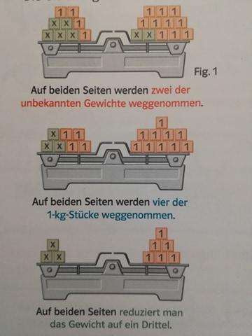ecuatii manual german